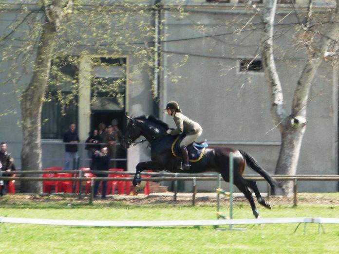 9 aprile 2010 - Celebrazione del 179° Anniversario della Costituzione delle Batterie a Cavallo